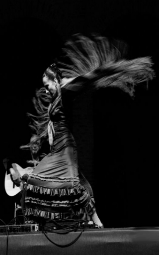 espectaculo flamenco en Valencia