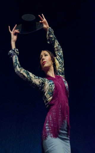 spectacle flamenco Valencia